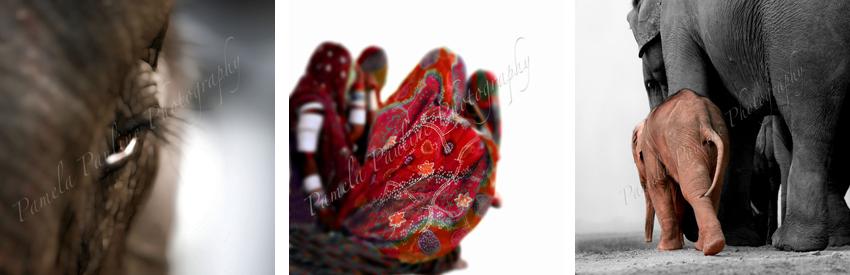indien-postkarten-p.pauline