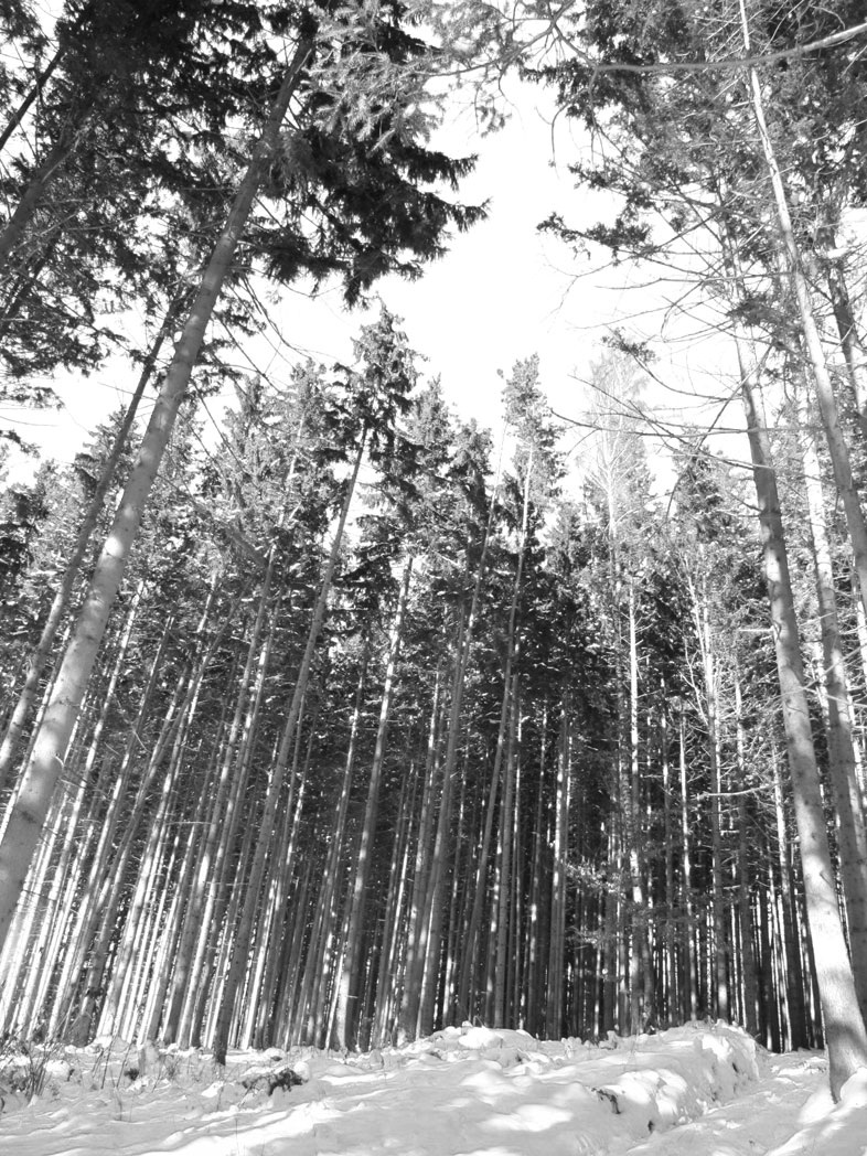 Piding. Berchtesgadener Land.