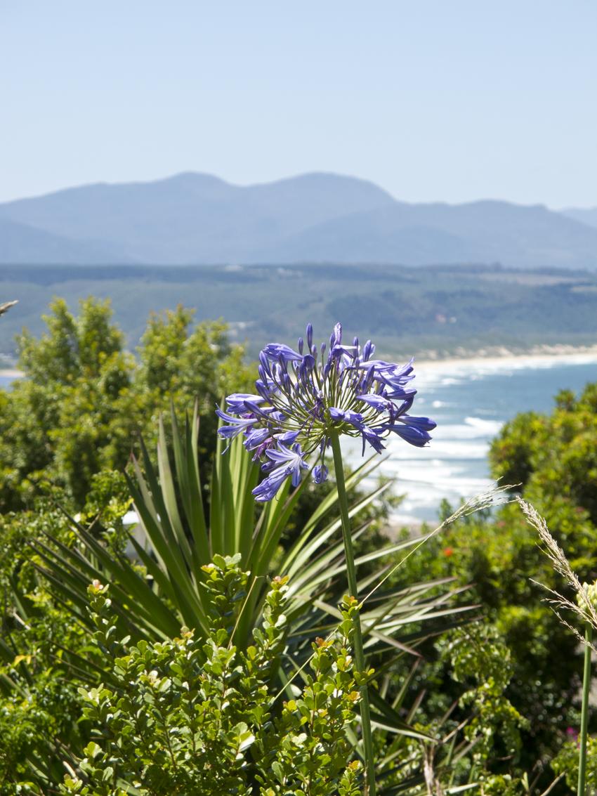 Südafrika_Garden-Route
