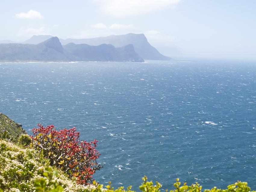 Südafrika_Kap-der-guten-Hoffnung