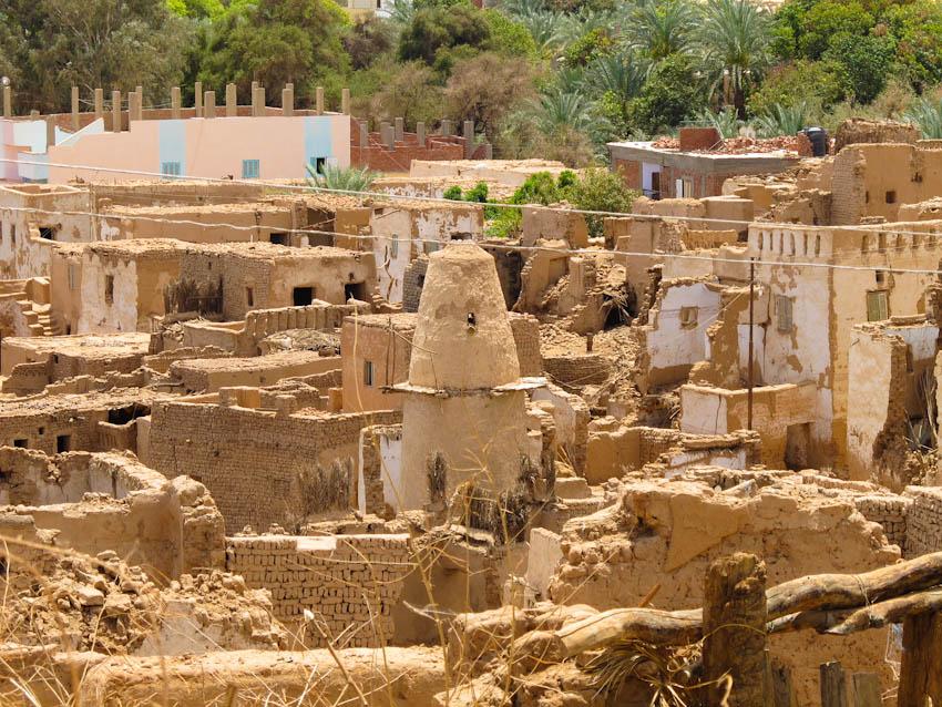 Ägypten Oasen-5052