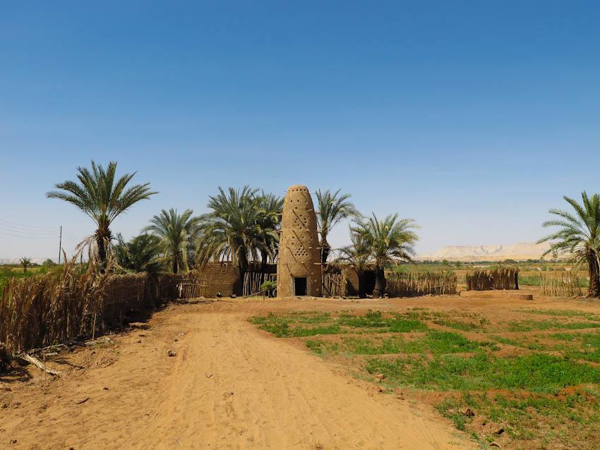 Ägypten Oasen-5122