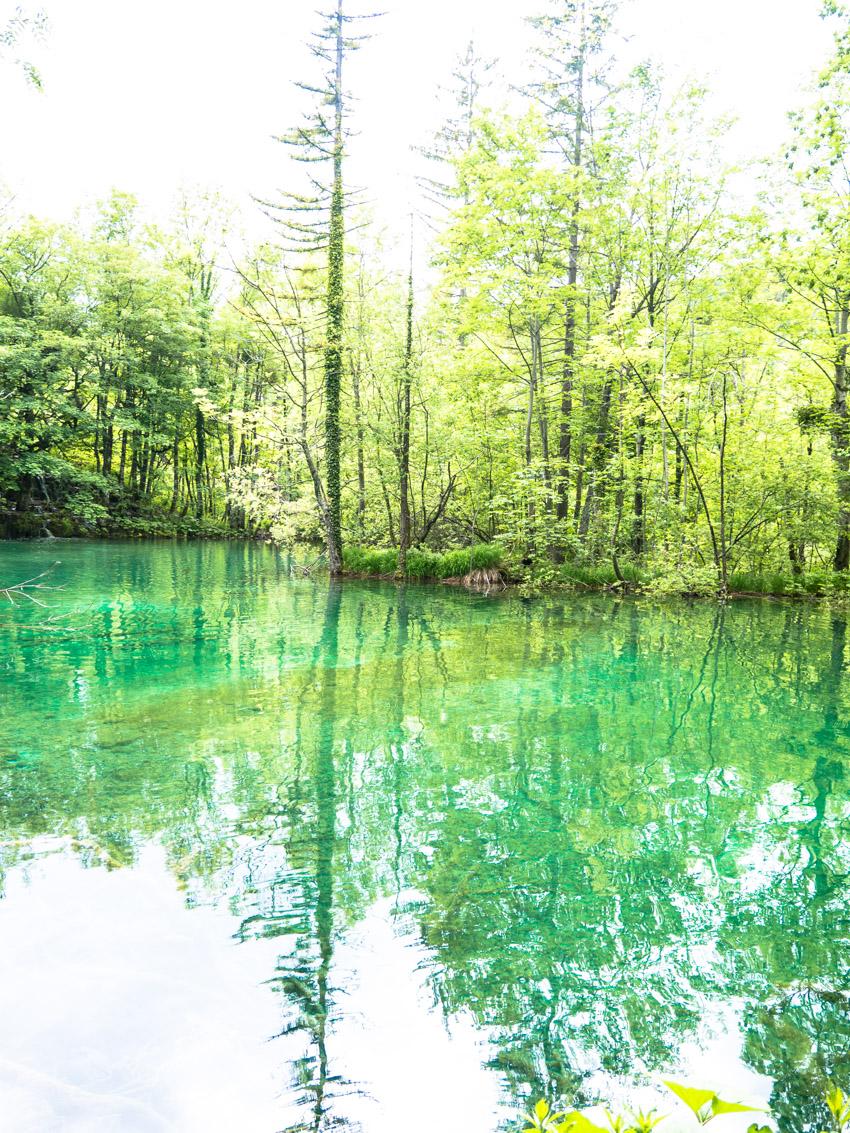 Plitvicer Seen Kroatien-1020687