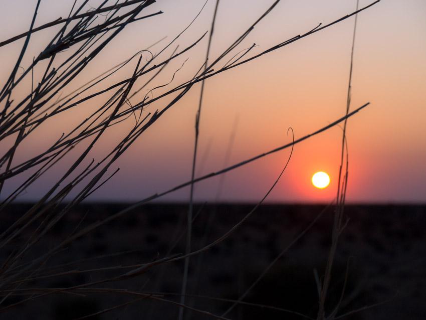 Kalahari Namibia Sonnenaufgang
