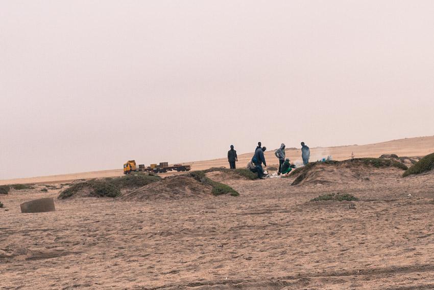 Namibia Atlantikküste Robben-1090304