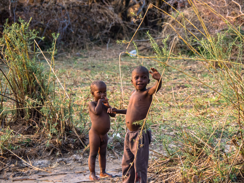 Namibia Okawango-1090713