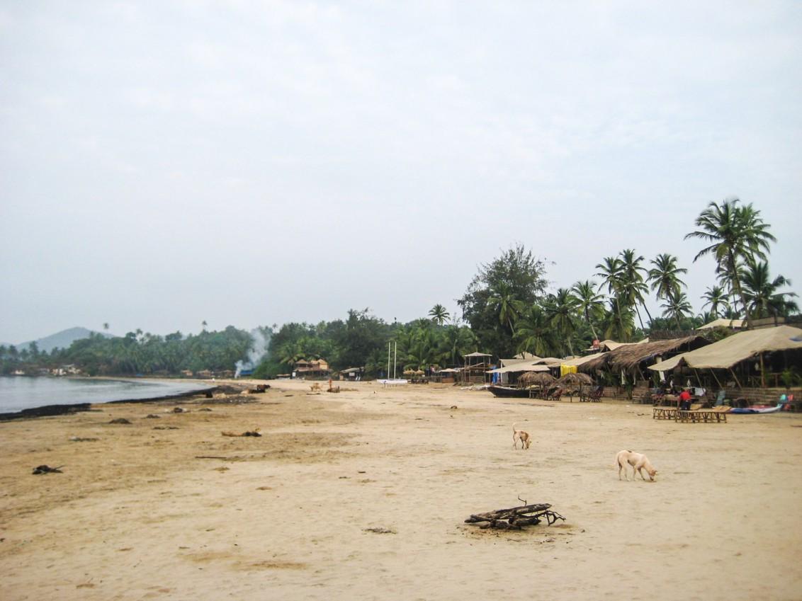 Goa Indien Patnem Palolem-3378