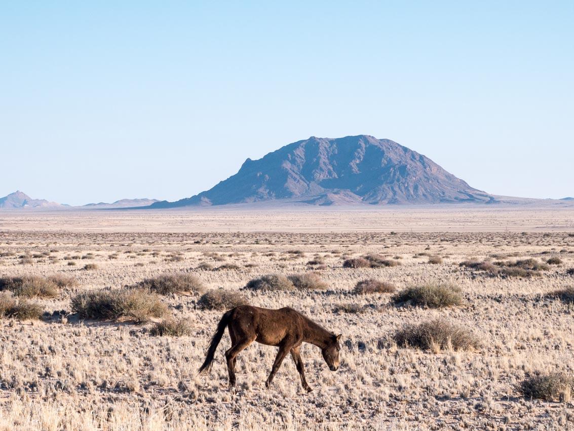 Namibia-1080574