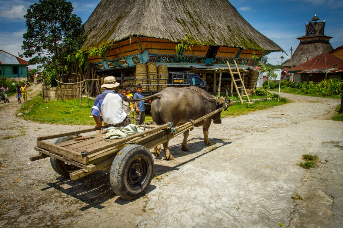 Dorf auf Sumatra in Indonesien