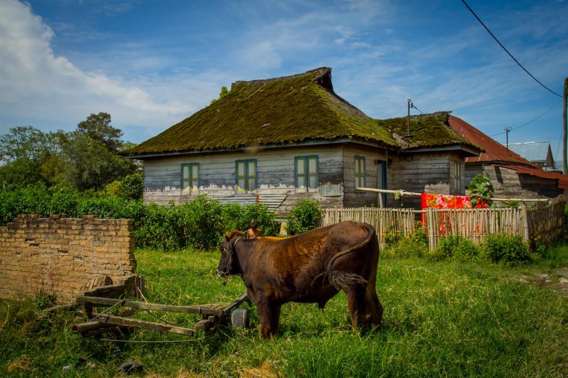 Indonesisches Dorf auf Sumatra
