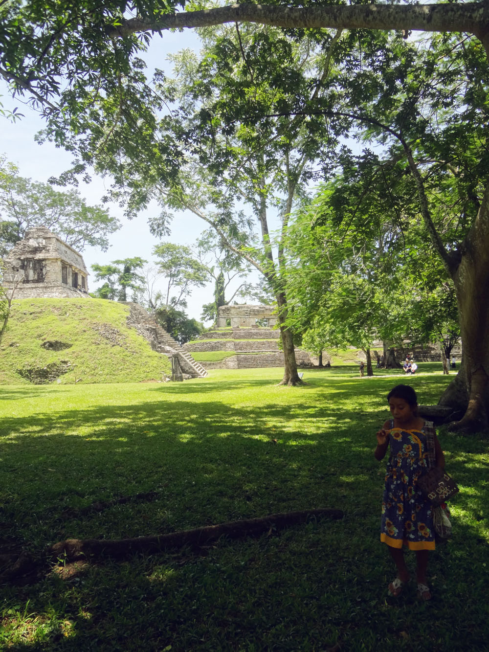 Mexiko Dschungel