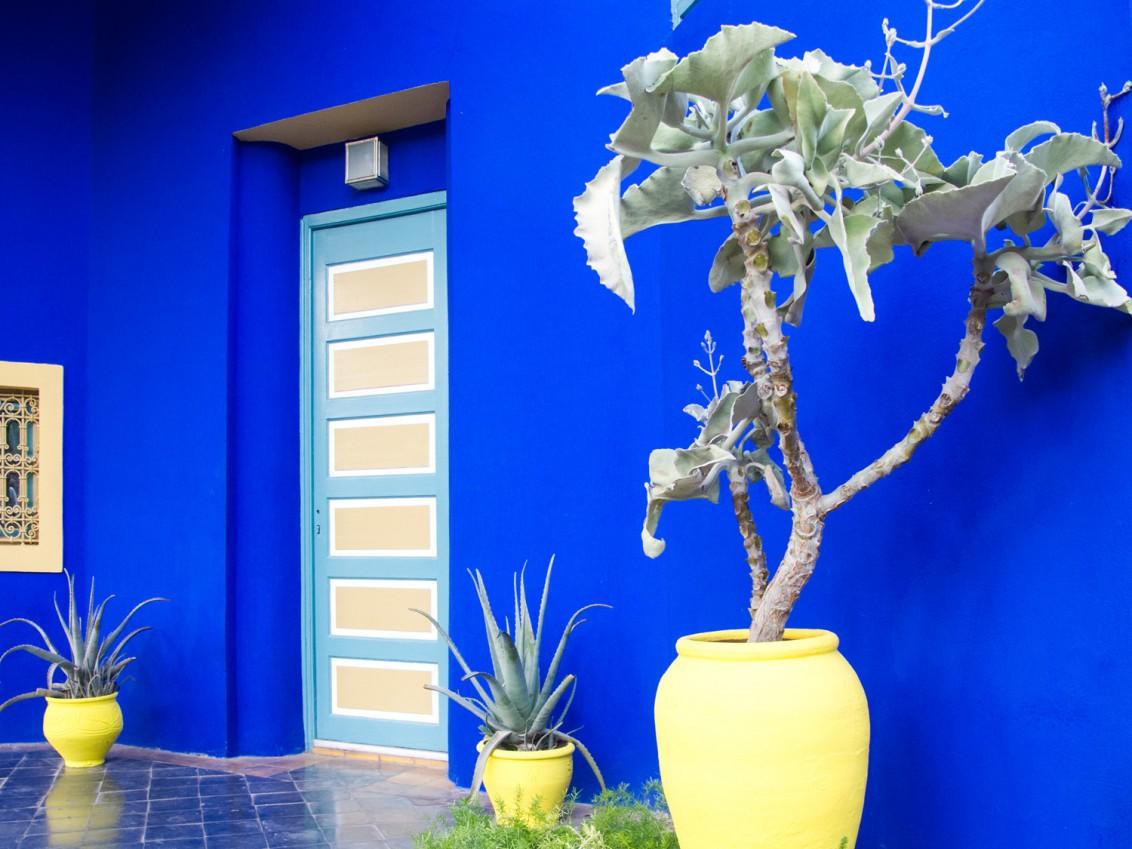 Marrakesch-jardin majorelle