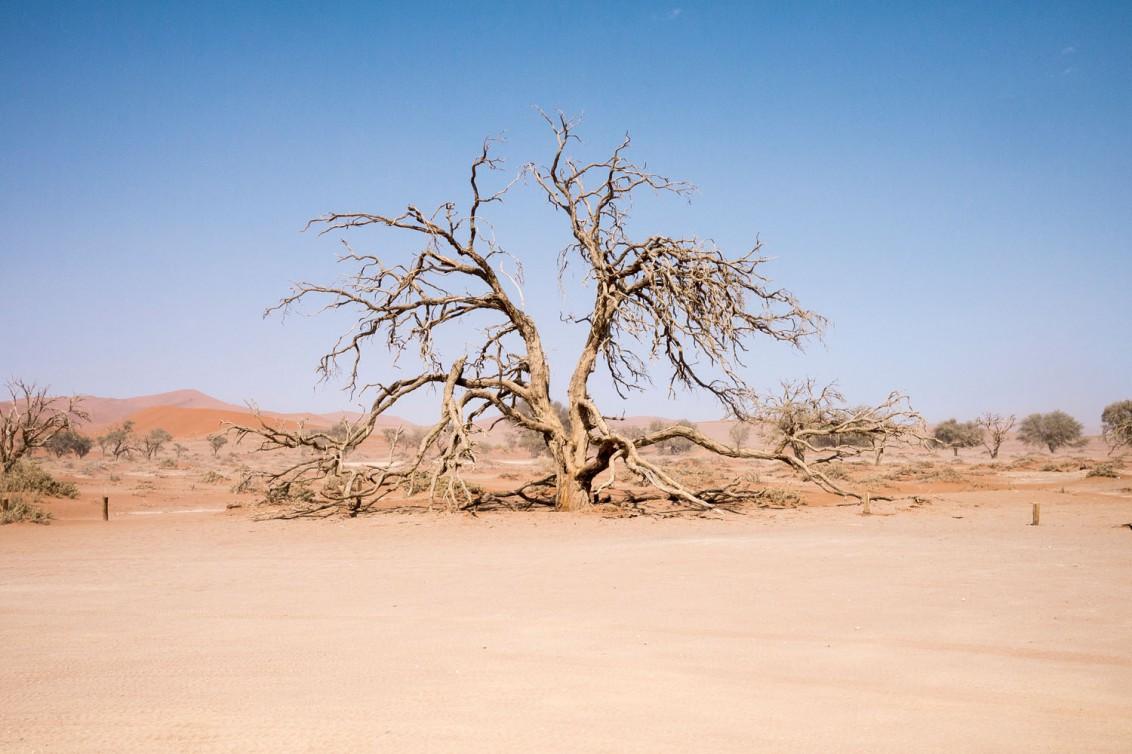 Namibia-1080983