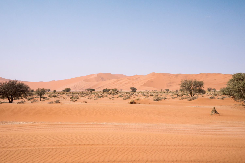 Namibia-1090029