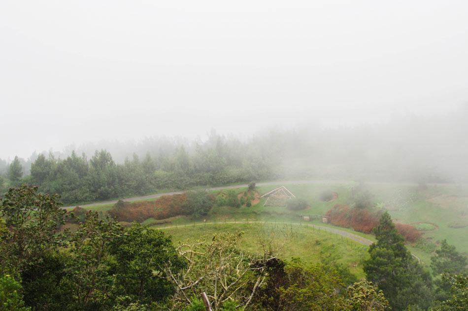 Nebel-Berge-reunion