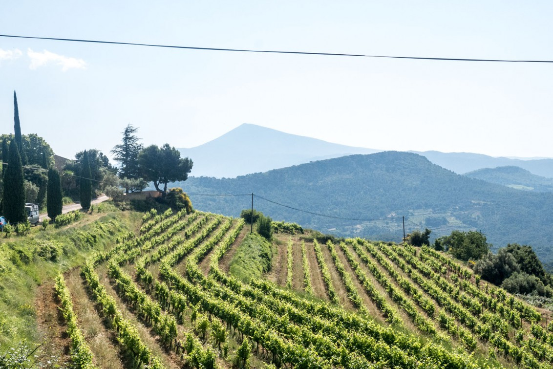 Provence_20150611_1777