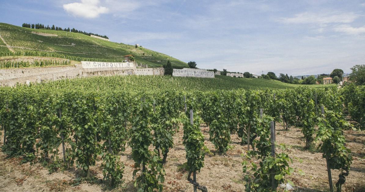Rhône-Alpes_2015_Tain-L'Hermitage