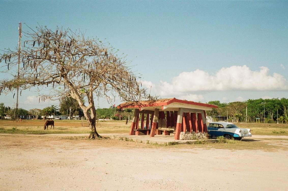 Cars and horses. Playa Larga.