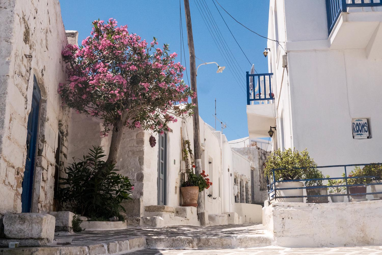 Griechenland_20150705_2522