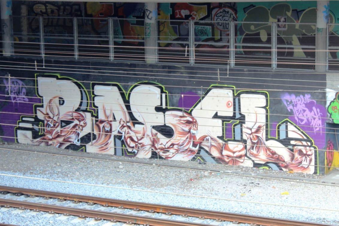 2. Zugeinfahrt Basel-Linie