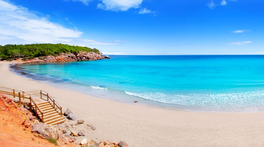 14263134 - cala nova beach in ibiza island with turquoise water in balearic mediterranean